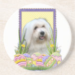 Easter Egg Cookies - Coton de Tulear Beverage Coasters