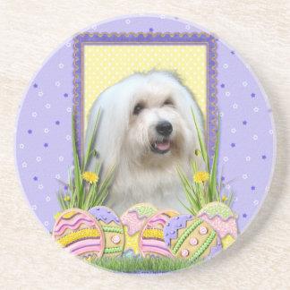 Easter Egg Cookies - Coton de Tulear Coaster