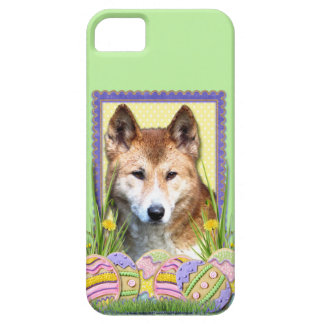 Easter Egg Cookies - Dingo iPhone SE/5/5s Case