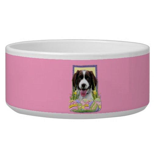 Easter Egg Cookies - English Springer Spaniel Dog Food Bowls