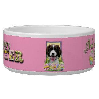 Easter Egg Cookies - English Springer Spaniel Dog Water Bowl