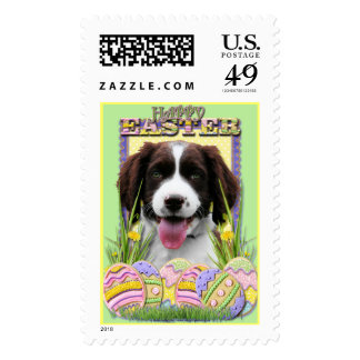 Easter Egg Cookies - English Springer Spaniel Postage Stamp