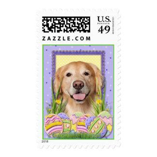 Easter Egg Cookies - Golden Retriever - Corona Stamps