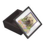 Easter Egg Cookies - GoldenDoodle Premium Jewelry Box