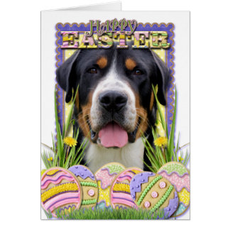 Easter Egg Cookies - Greater Swiss Mountain Dog Card