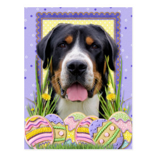 Easter Egg Cookies - Greater Swiss Mountain Dog Postcard