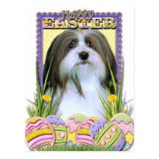 Easter Egg Cookies - Havanese Postcard