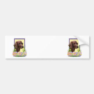 Easter Egg Cookies - Irish Setter Bumper Sticker
