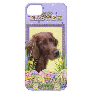 Easter Egg Cookies - Irish Setter iPhone SE/5/5s Case