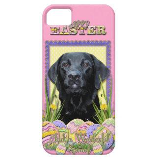 Easter Egg Cookies - Labrador - Black iPhone SE/5/5s Case