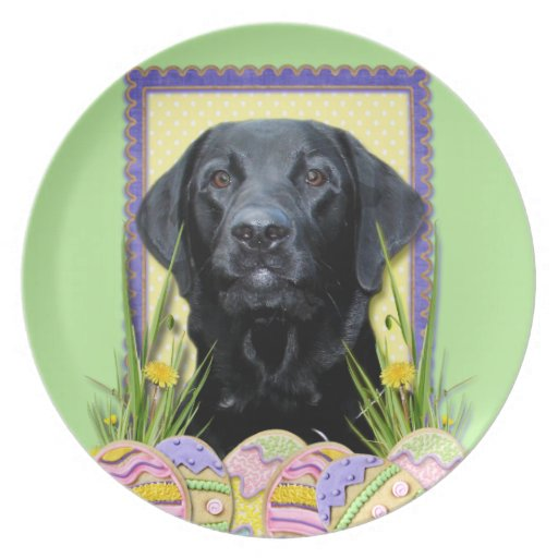 Easter Egg Cookies - Labrador - Black Plates