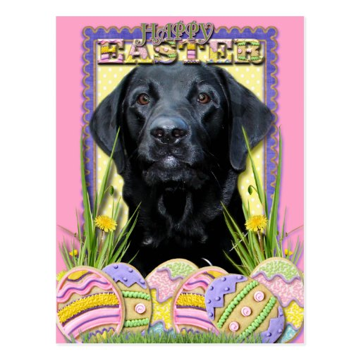 Easter Egg Cookies - Labrador - Black Post Cards