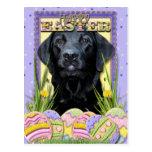 Easter Egg Cookies - Labrador - Black Postcard