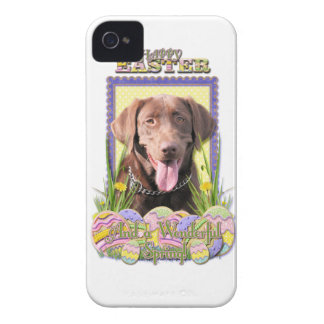 Easter Egg Cookies - Labrador - Chocolate iPhone 4 Cover