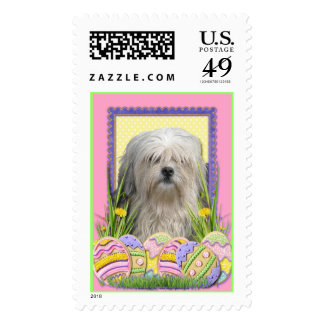 Easter Egg Cookies - Lowchen Postage Stamp