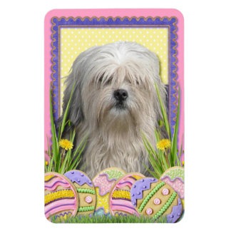 Easter Egg Cookies - Lowchen Rectangle Magnet