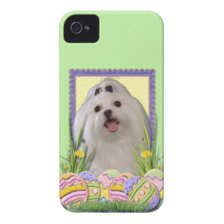 Easter Egg Cookies - Maltese Case-Mate iPhone 4 Case