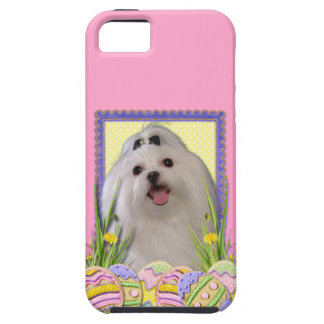 Easter Egg Cookies - Maltese iPhone SE/5/5s Case