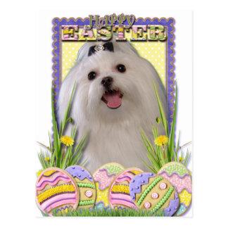 Easter Egg Cookies - Maltese Postcard