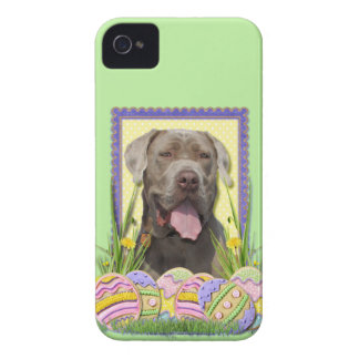 Easter Egg Cookies - Mastiff iPhone 4 Covers