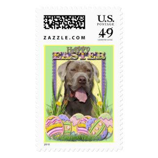 Easter Egg Cookies - Mastiff Postage