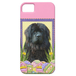 Easter Egg Cookies - Newfoundland iPhone SE/5/5s Case
