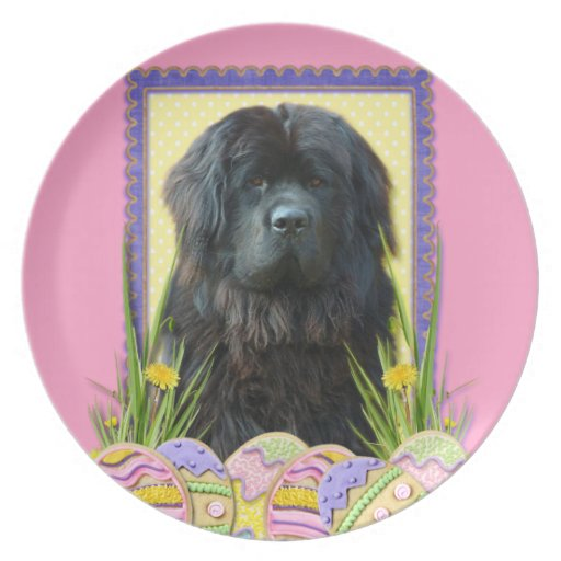 Easter Egg Cookies - Newfoundland Plate