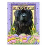 Easter Egg Cookies - Newfoundland Postcard