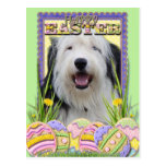Easter Egg Cookies - Old English Sheepdog Postcard