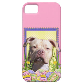 Easter Egg Cookies - Pitbull - Jersey Girl iPhone 5 Cases