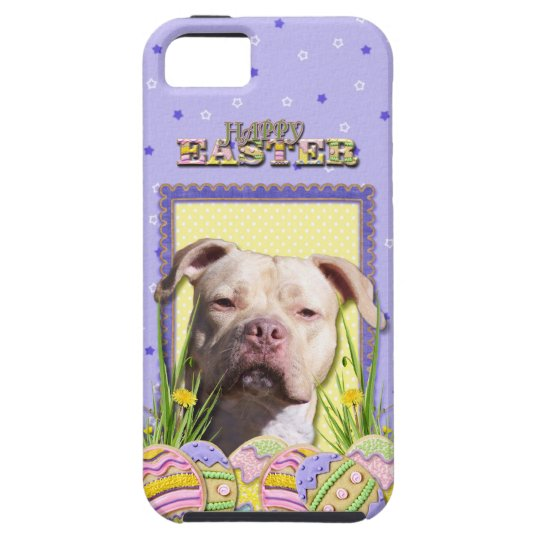 Easter Egg Cookies - Pitbull - Jersey Girl iPhone SE/5/5s Case