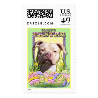 Easter Egg Cookies - Pitbull - Jersey Girl Stamp