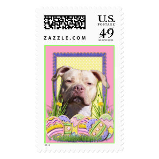 Easter Egg Cookies - Pitbull - Jersey Girl Postage