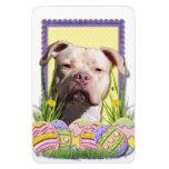 Easter Egg Cookies - Pitbull - Jersey Girl Vinyl Magnet