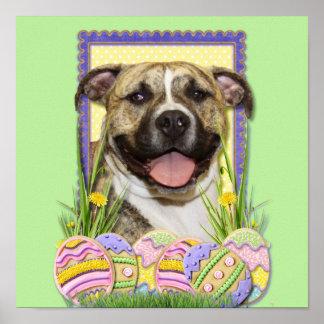 Easter Egg Cookies - Pitbull - Tigger Poster