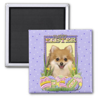 Easter Egg Cookies - Pomeranian Magnets