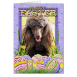 Easter Egg Cookies - Poodle - Chocolate Cards