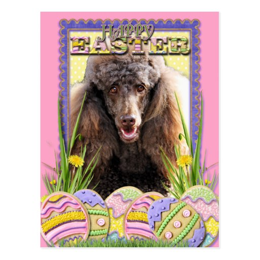 Easter Egg Cookies - Poodle - Chocolate Postcards