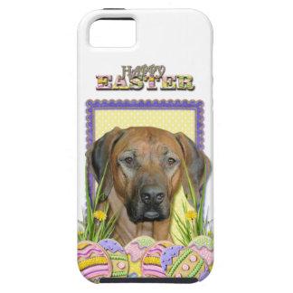 Easter Egg Cookies - Rhodesian Ridgeback iPhone SE/5/5s Case