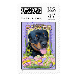Easter Egg Cookies - Rottweiler - Harley Postage
