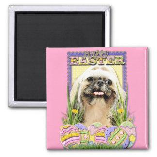 Easter Egg Cookies - Shih Tzu - Opal Fridge Magnet