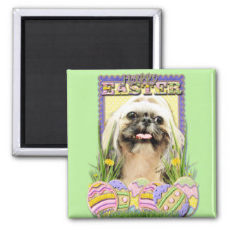 Easter Egg Cookies - Shih Tzu - Opal Magnets