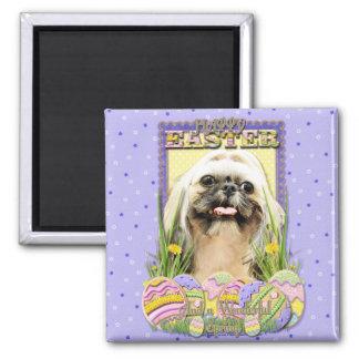 Easter Egg Cookies - Shih Tzu - Opal Fridge Magnets