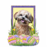 Easter Egg Cookies - ShihPoo Acrylic Cut Outs