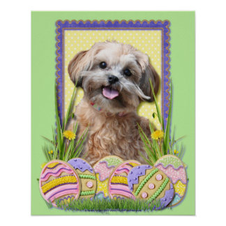 Easter Egg Cookies - ShihPoo Poster