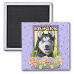 Easter Egg Cookies - Siberian Husky Magnet
