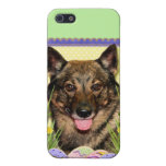 Easter Egg Cookies - Vallhund Covers For iPhone 5
