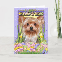 Easter Egg Cookies - Yorkshire Terrier Holiday Card