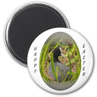easter egg coot on her nest fridge magnets