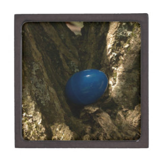 easter egg in a tree for easter egg hunt gift box